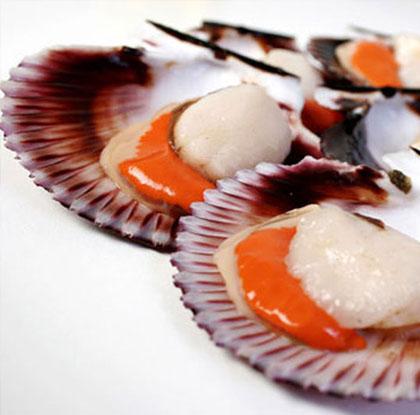 conchas de abanico-1
