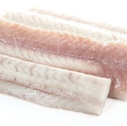 filetes-angila-1